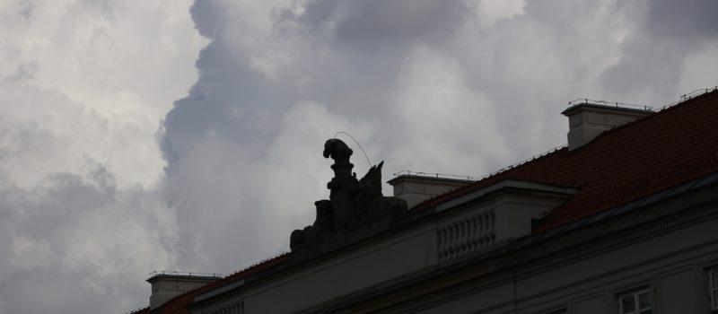 Muzeum Uniwersytetu Warszawskiego