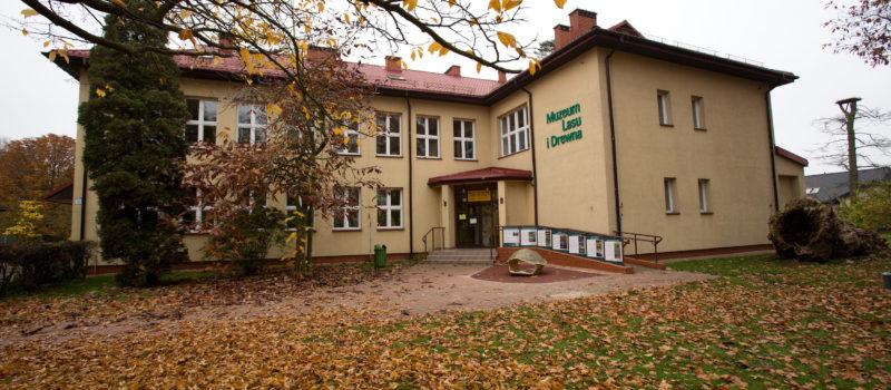 Muzeum Lasu i Drewna