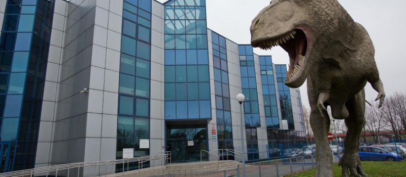 Muzeum Wydziału Nauk o Ziemi Uniwersytetu Śląskiego