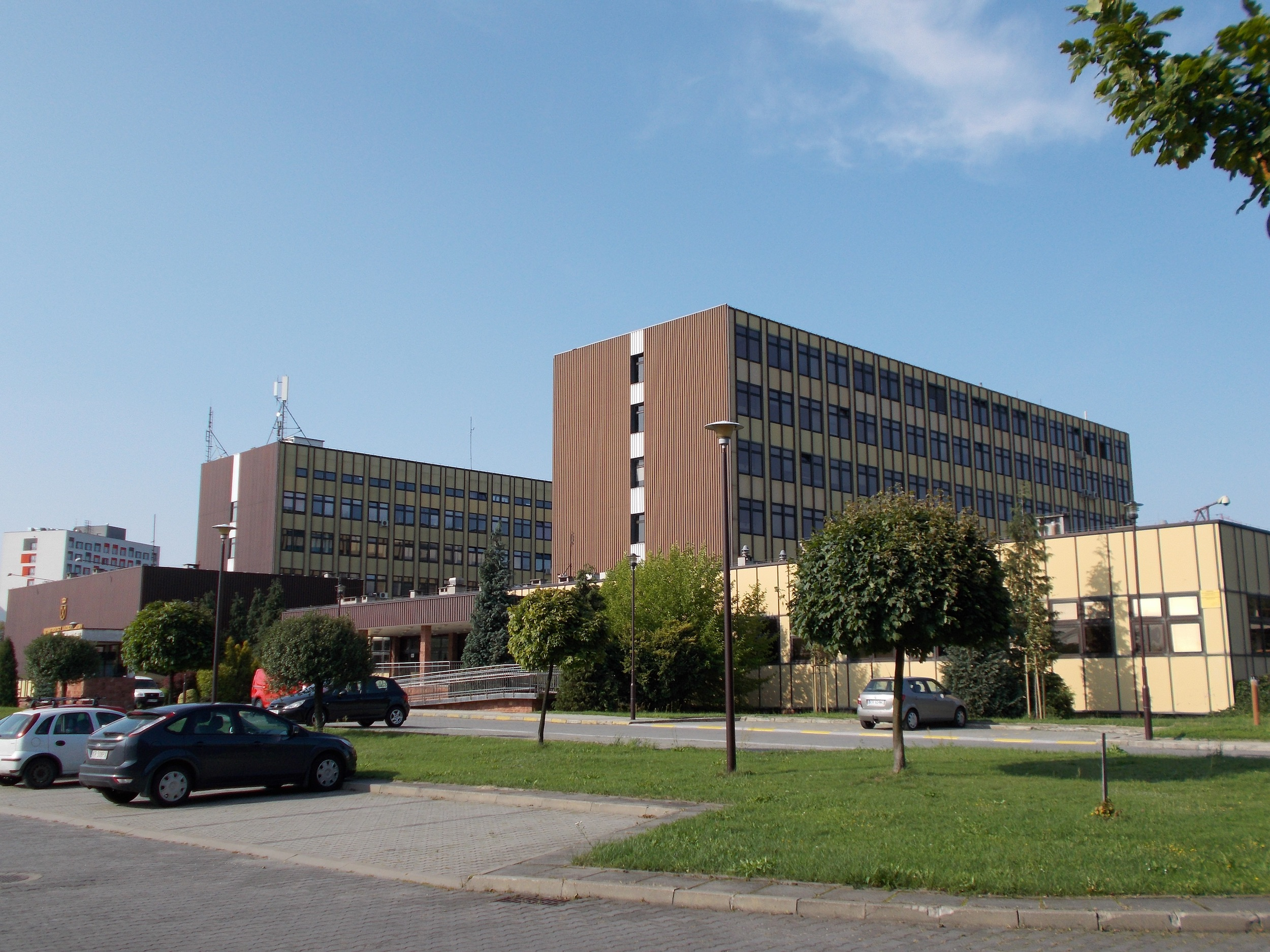 Association of University Museums