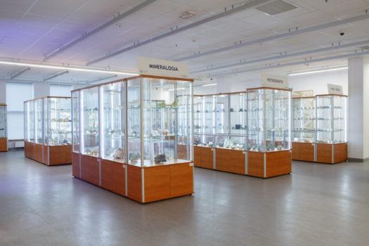 Geological Museum, University of Szczecin