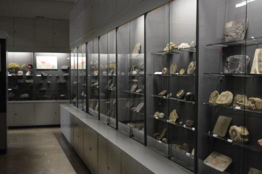 Muzeum Geologiczne im. Henryka Teisseyre, Instytut Nauk Geologicznych Uniwersytetu Wrocławskiego