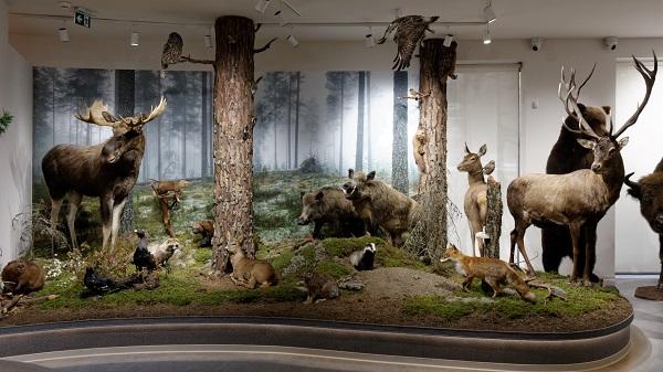 Muzeum to nie tylko wystawa – wykład w Muzeum Uniwersytetu Warszawskiego