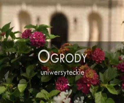 "Ogrody uniwersyteckie – projekt ""Otwarty Kampus"""